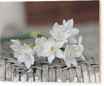 Beautiful Spring Paperwhites Wood Print