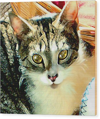 Wood Print featuring the painting Beautiful Tabby by Elinor Mavor