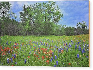Beautiful Texas Spring Wood Print