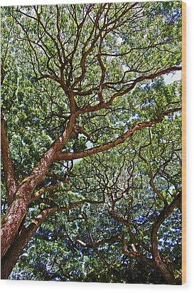 Beautiful Waimea Trees Wood Print