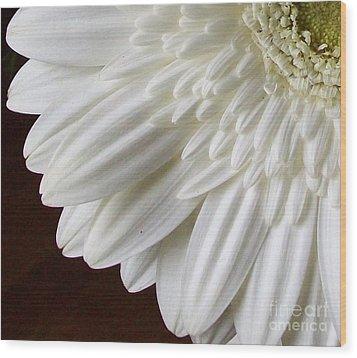 Beautiful Whiteness Wood Print by Marsha Heiken