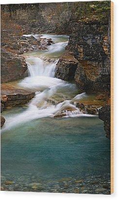 Beauty Creek Cascades Wood Print by Larry Ricker