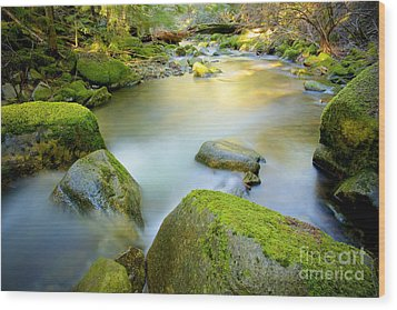 Beauty Creek Wood Print by Idaho Scenic Images Linda Lantzy