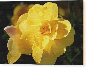 Wood Print featuring the photograph Beauty In Yellow by Milena Ilieva
