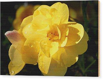 Beauty In Yellow Wood Print by Milena Ilieva