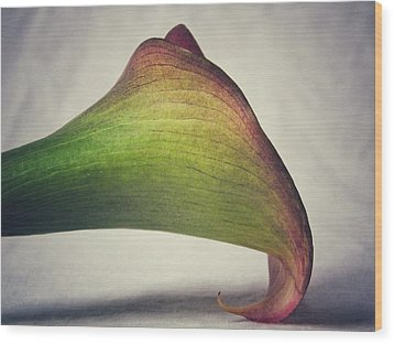 Wood Print featuring the photograph Beauty by Karen Stahlros