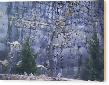 Wood Print featuring the photograph Beauty Of The Gorge by Dale Stillman