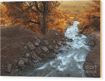 Beauty Of The Nature Wood Print by Charuhas Images