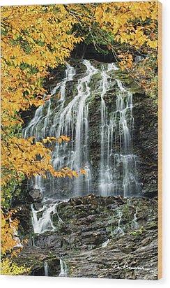 Beaver Brook Falls 8918 Wood Print by Dan Beauvais