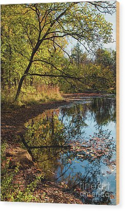 Wood Print featuring the photograph Beaver's Pond by Iris Greenwell
