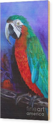 Becky The Macaw Wood Print by Jenny Lee