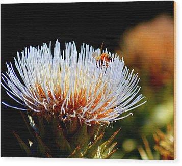 Bee And Artichoke Wood Print