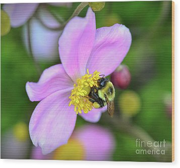 Wood Print featuring the photograph Bee And Japanese Anemone by Kerri Farley