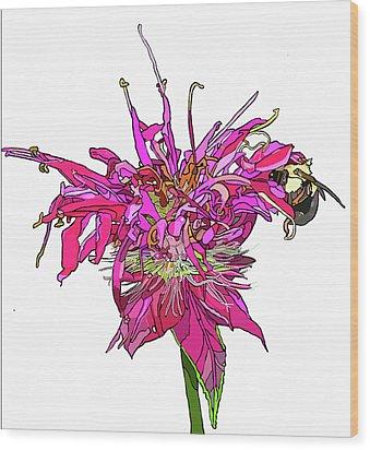 Bee Balm Wood Print