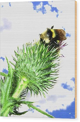 Bee-line 4 Wood Print by Will Borden