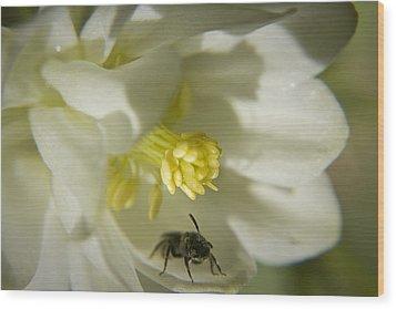 Bee Mine Wood Print by Teresa Mucha