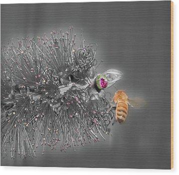 Beeautiful Wood Print by Kelly Jones