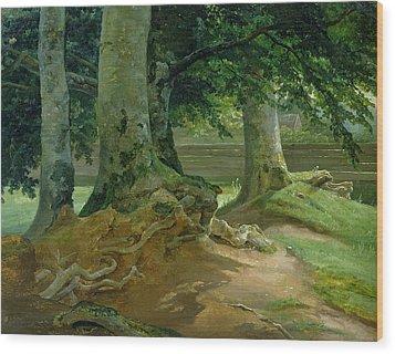 Beech Trees In Frederiksdal Near Copenhagen Wood Print by Christian Ernst Bernhard Morgenstern