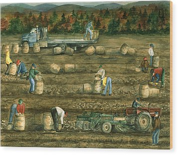 Been There Done That In Aroostook County Wood Print by Paula Robertson