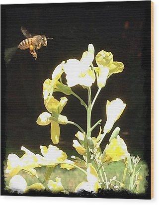 Bees Love Broccoli Wood Print