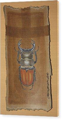 Beetle II Wood Print by Gonca Yengin