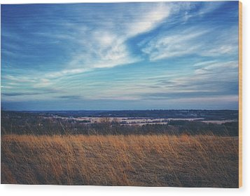 Wood Print featuring the photograph Before Sunset At Retzer Nature Center - Waukesha by Jennifer Rondinelli Reilly - Fine Art Photography