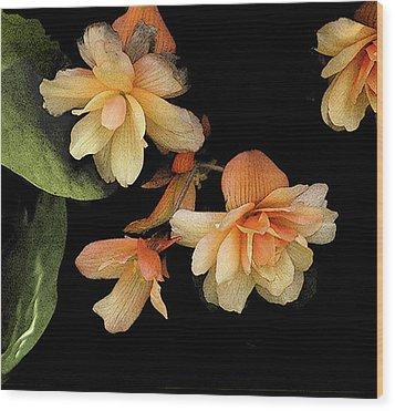 Begonias 2 Wood Print