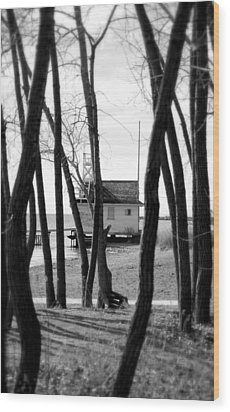 Wood Print featuring the photograph Behind The Trees by Valentino Visentini