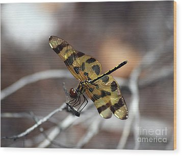 Bejeweled Wings Wood Print