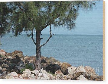 Belize Ocean Front Wood Print