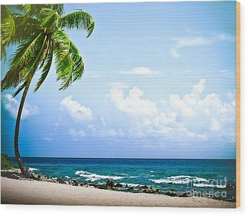 Belize Private Island Beach Wood Print by Ryan Kelly