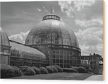 Belle Isle Conservatory 3 Bw Wood Print by Mary Bedy