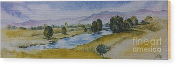Bellinger Valley In Spring Wood Print