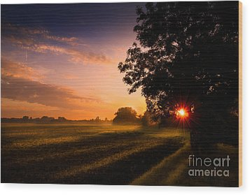 Wood Print featuring the photograph Beloved Land by Franziskus Pfleghart
