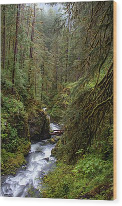 Below The Falls Wood Print by David Andersen