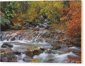 Below The Waterfall Wood Print by Tim Reaves
