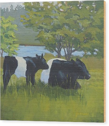Belted Galloway And Calf Wood Print