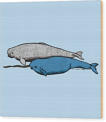 Beluge And Narwhal Whale - Color Wood Print by Karl Addison