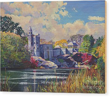 Belvedere Castle Central Park Wood Print by David Lloyd Glover