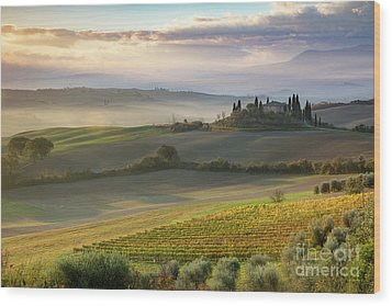 Wood Print featuring the photograph Belvedere Morning by Brian Jannsen
