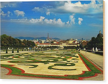 Wood Print featuring the photograph Belvedere Palace Gardens by Mariola Bitner