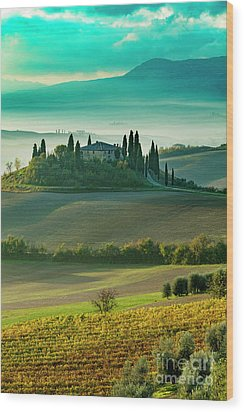 Wood Print featuring the photograph Belvedere - Tuscany II by Brian Jannsen