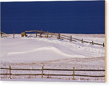 Wood Print featuring the photograph Bench On A Winter Hill by Don Nieman