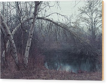 Wood Print featuring the photograph Bending Birch by Andrew Pacheco