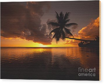 Bending Palm Wood Print by Ron Dahlquist - Printscapes
