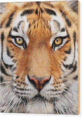 Bengal Tiger Wood Print by Bill Fleming
