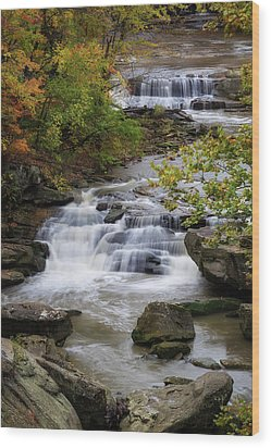 Wood Print featuring the photograph Berea Falls by Dale Kincaid