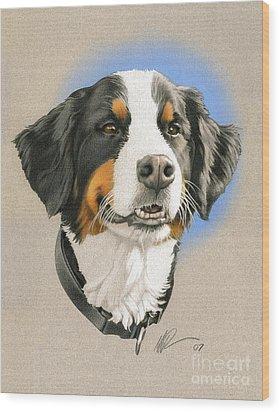 Bernese Mountain Dog Wood Print by Marshall Robinson
