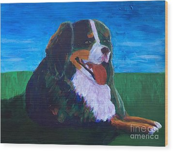 Wood Print featuring the painting Bernese Mtn Dog Resting On The Grass by Donald J Ryker III