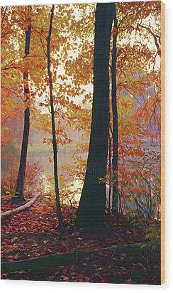 Bernharts Dam Fall 031 Wood Print by Scott McAllister